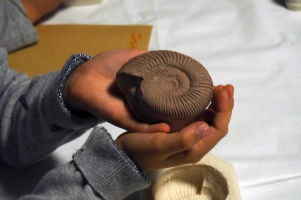 Réplica fósil ammonite
