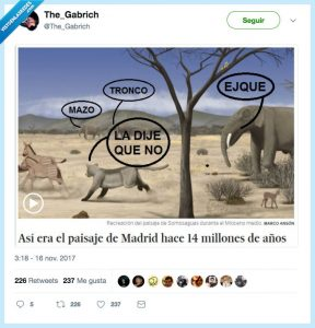 Mioceno, meme, somosaguas